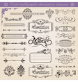 calligraphic decoration elements set vector image
