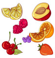 set of fruits on white background vector image