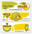 olive oil banners for food design vector image