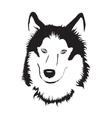 Siberian Husky Stock vector image