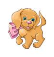 A cute dog vector image