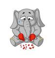 elephant broken heart in his hands vector image