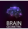 Brain geometric shapes vector image