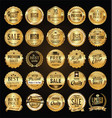 retro labels and badges golden collection vector image