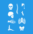 silhouette white human skeleton and part set vector image