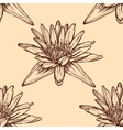 Hand drawn water lilies seamless on a background vector image