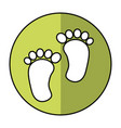 foot print baby isolated icon vector image