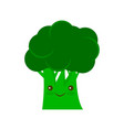 broccoli icon flat sign vector image