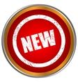 New grunge icon vector image