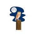 Owl on Branch Retro vector image