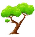 Cartoon heart shaped tree vector image vector image