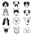 Dogs Breed Collection vector image