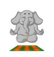 elephant character does yoga cartoon vector image
