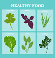 set vegetables and herbs flat healthy vegetarian vector image