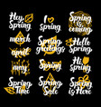 spring time hand drawn quotes vector image