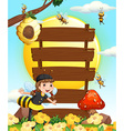 Wooden signs and bees flying in the garden vector image
