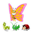 Insect Cartoon Character Pack One vector image