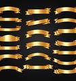 Luxury Elegant and Royal Ribbons Design vector image