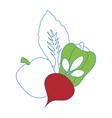 healthy vegetables symbol vector image