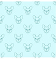 Seamless pattern made of french bulldog head vector image