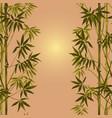 bamboo seamless vertical border vector image