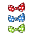 Set of Colorful Bows Isolated on White Background vector image