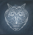 geometric owl on chalkboard vector image