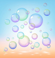 Soap bubbles vector image