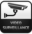 cctv symbol video surveillance sign security camer vector image