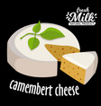 camembert cheese fresh camembert cheese and a vector image