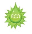creative eco green drop symbol vector image