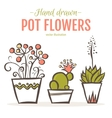 Set of hand drawn houseplants in pots vector image