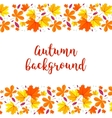 Autumn lettering background Autumn background vector image
