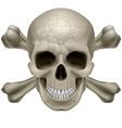 Skull and crosbones vector image vector image