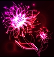Glowing flower abstract background vector image