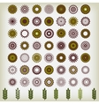 Round Ornament Pattern flower vector image
