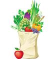 shopping bag full of vegetables vector image vector image