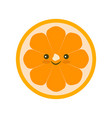 yellow orange fruit icon isolated vector image