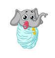 baby is wrapped with a pacifier in his mouth vector image