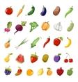 Cartoon fruit and vegetables organic healthy big vector image vector image