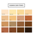 human skin tone set vector image