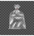 Template Blank Transparent Polyethylene Pack Bag vector image
