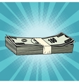 The package of hundred-dollar bills wealth vector image