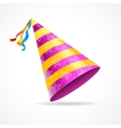 Party Hat vector image