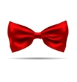 black silk bow tie on a background vector image