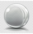 Big gray glass sphere vector image