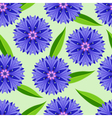 Summer seamless pattern with cornflowers vector image vector image