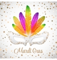 Mardi Gras mask with colorful feathers vector image