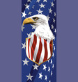 the national symbol of the usa vector image