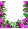 Tropical leaves Floral design background vector image